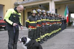 assunzioni vigili fuoco 2014