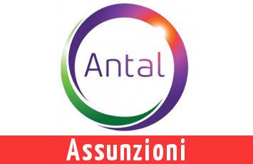 Antal 22 Nuove Assunzioni in Italia