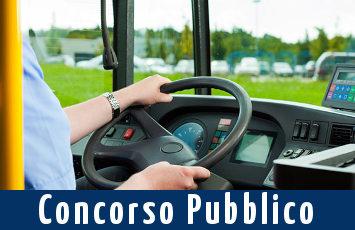 concorso-autista-autobus-2017