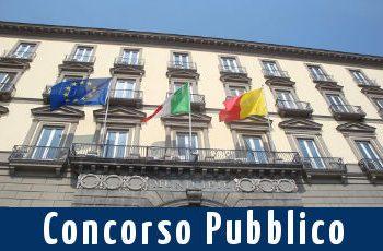 Concorsi in Comune, 30 Posti per Diplomati e Laureati